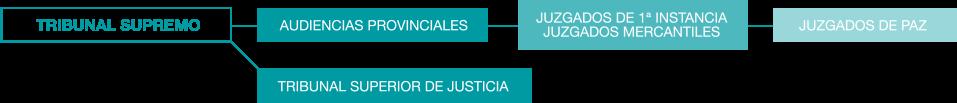 graf_jurisdiccion civil